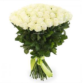 arajman vip 51 Beyaz Güller