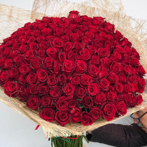11 red roses in white box 251 roses bouquet