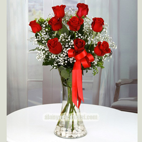 alanya florist 9 Red Roses in Vase