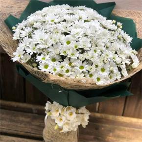 заказать доставку букета цветов в алании на нашем сайте Большая ромашка