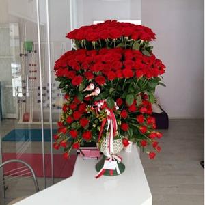 vazoda 19 güller Özel Vip Tasarım