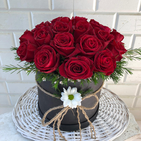 11 red roses in white box