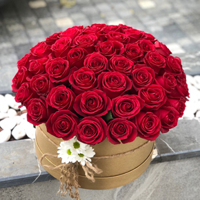 65 Roses in Box