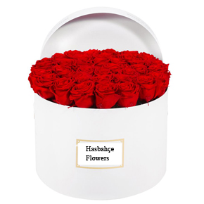 güllerden özel tasarım Beyaz Kutuda 35 Gül
