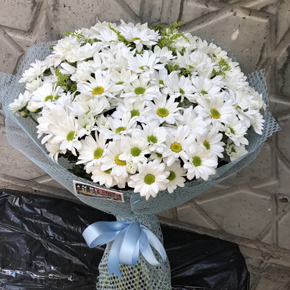 alanya florist Bouquet Of Daisies Bouquet